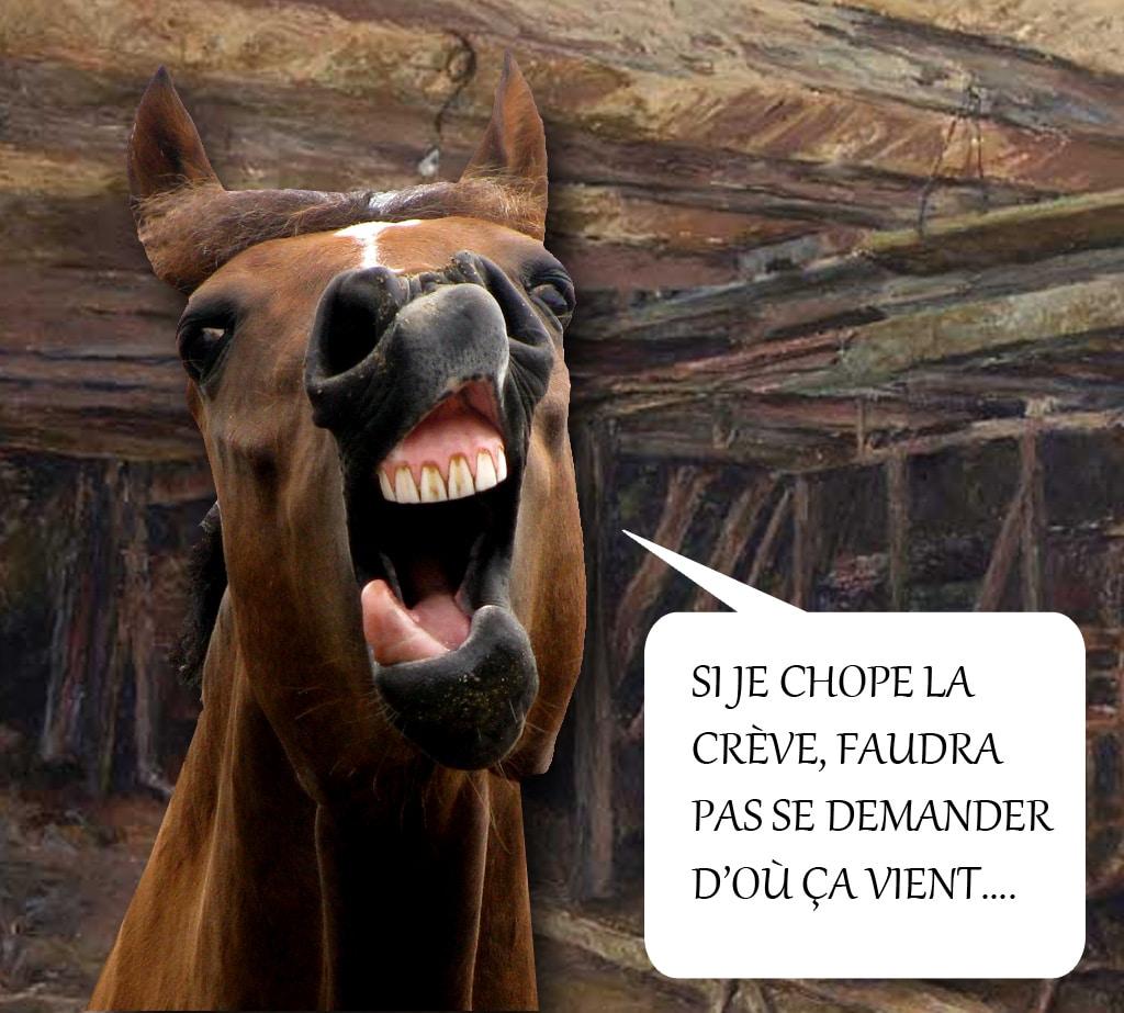 fabliau_medieval_trouvere_bernier_moyen-age_la_housse_partie