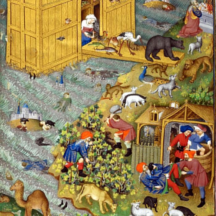 La sortie de l'Arche de Noé et l'ivresse du patriarche, 1430 Manuscrit du maître de Bedford, 1430,