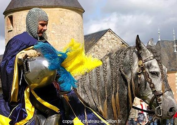 fetes_medievales_lieux_interet_histoire_patrimoine_historique_chateau_anguillon