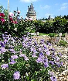 jardin_medieval_chateau_groulaie_blain_monument_classe_historique