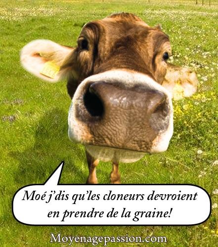 fabliau_humour_medieval_vache_vilain_pretre_jean_bodel_trouvere_moyen-age
