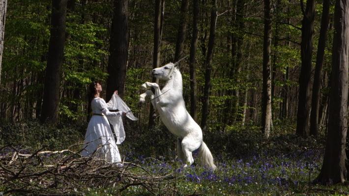 La compagnie de la Licorne d'Argent ou quand la poésie se mêle au dressage animalier pour faire revivre les licornes et le monde médiéval,
