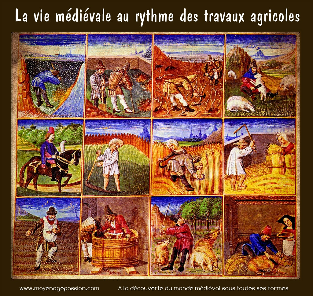 Calendrier Agricole Moyen Age.Calendrier Agricole Moyen Age Passion