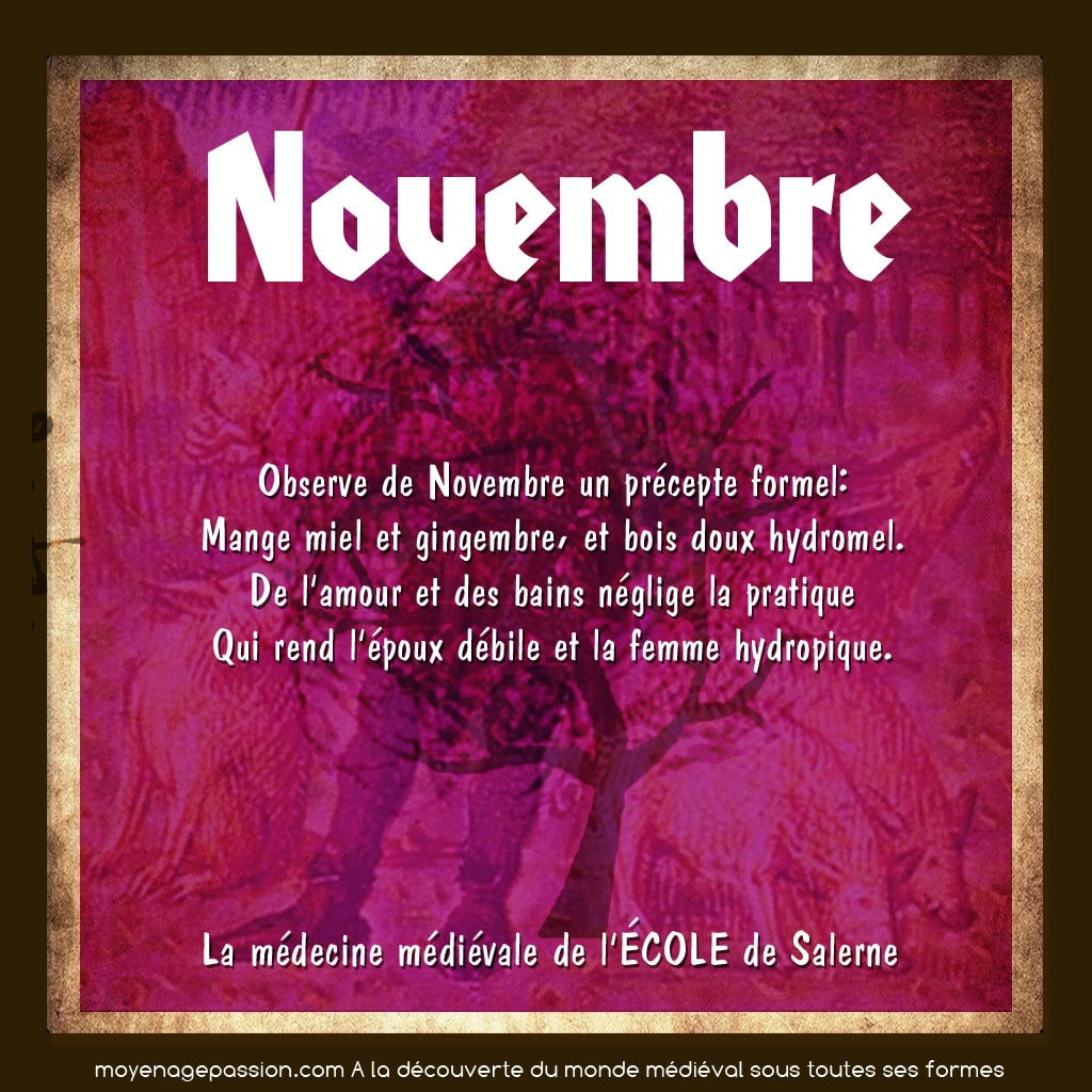 science_hygiene_medecine_medievale_salerne_mois_novembre_calendrier_moyen-age_central