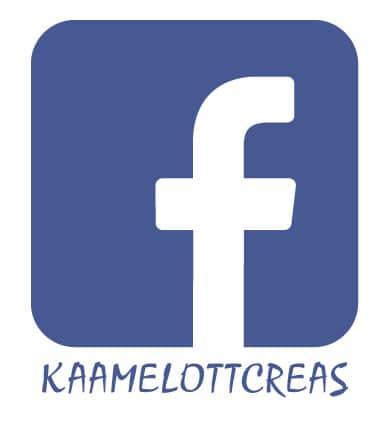 facebook_page_kaamelott_creation_humour_detournement_alexandre_astier