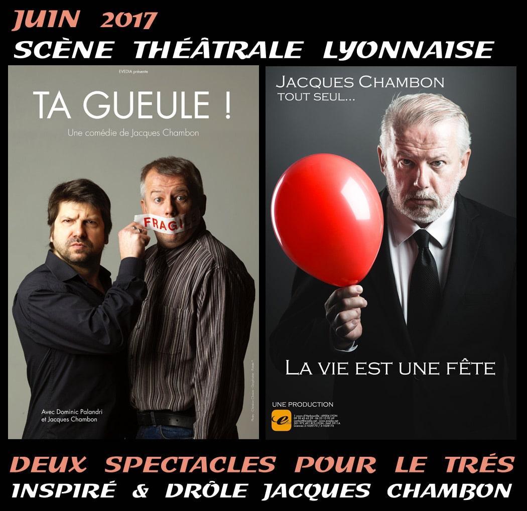 humour_spectacle_actualite_theatrale_jacques_chambon_acteur_merlin_kaamelott