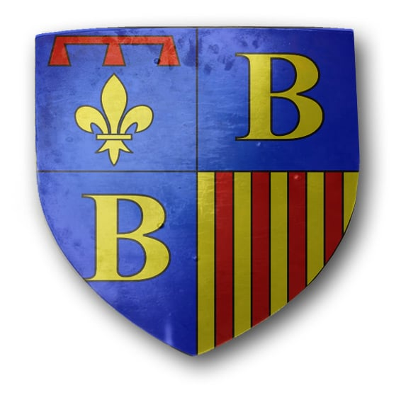 brignoles_provence_medievale_armoiries_blason_heraldiique