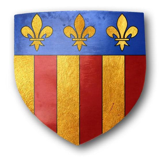 revues_historiques_fetes_animations_medievales_heraldique_armoirie_blason_amboise_val_de_loire
