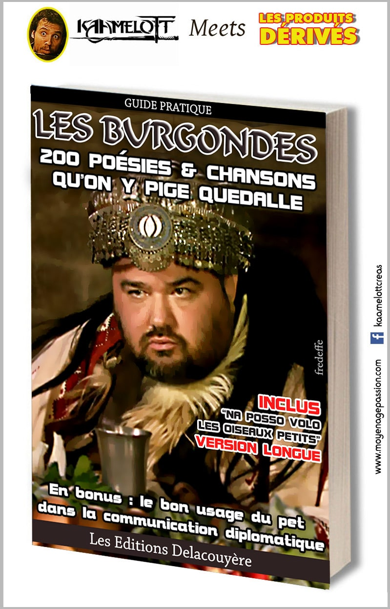kaamelott_serie_televisee_livres_legendes_arthuriennes_alexandre_astier_roi_burgonde_guillaume_briat_humour_detournement_lecture