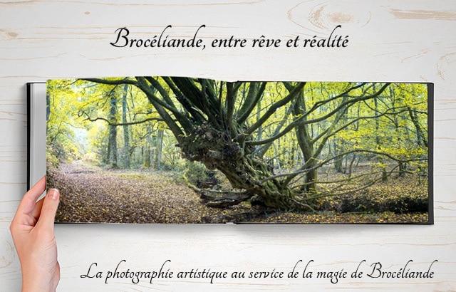 broceliande_beau_livre_photographie_foret_mythique_legendes_arthuriennes_roi_arthur_moyen-age_central