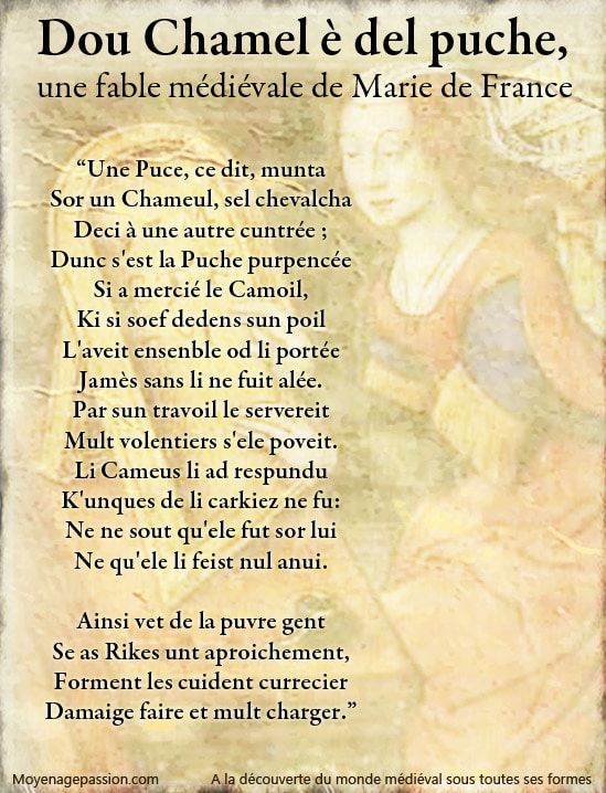 fable_litterature_medievale_ysopet_marie_de_france_poete_moyen-age_central_vieux_francais_oil