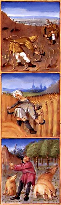 enluminures_calendrier_paysan_conference_agriculture_medievale_moyen-age_central