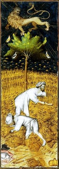 litterature_medievale_fabliaux_contes_poesie_satirique_paysans_vilains_manuscrit_ancien_rohan_moyen-age