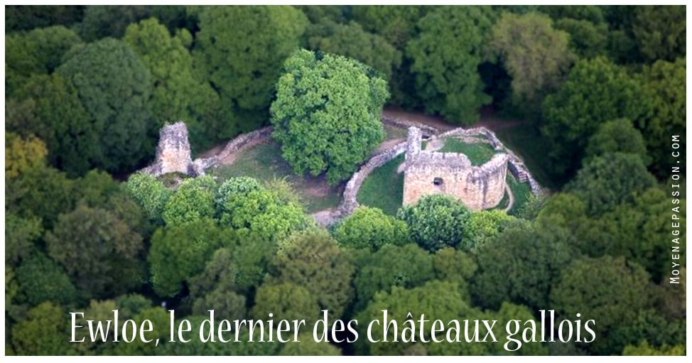 ewloe_chateau_fort_gallois_angleterre_europe_medievale_moyen-age_central