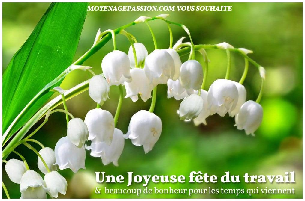 joyeux_1er_mai_muguet_fete_du_travail