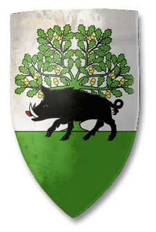 Sedan_medieval_Grand-Est_Ardennes_armoirie_ecu_blason
