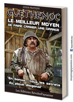 guethenoc_livre_kaamelott_humour_detournement_serie-tv