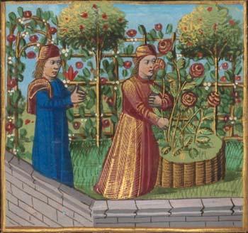 poesie-satirique-medievale_roman-de-la-rose_Guillaume-De-Lorris_Jean-De-Meung_Moyen-Age_XIIIe-siecle