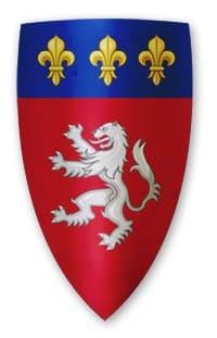 ecu-armoirie-lyon-blason-auvergne-rhone-alpes
