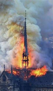 cathedrale-notre-dame-actualite-reflexion-litterature-moyen-age