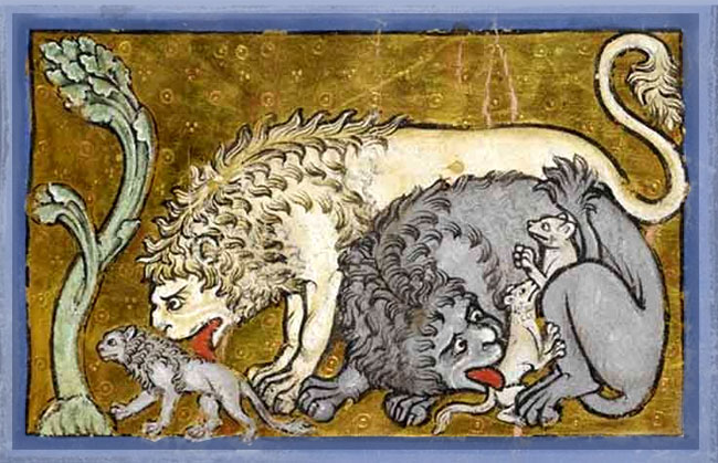 lion-fable-medievale-comte-lucanor-espagne-medievale-moyen-age