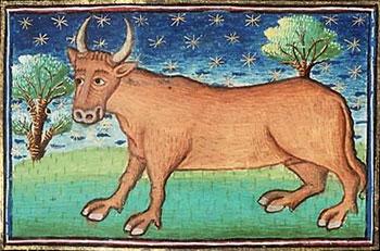 taureau-fable-medievale-espagne-moyen-age-conte-morale-politique