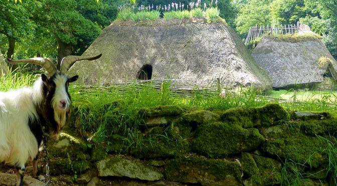 Le village médiéval de l'an Mil de Melrand : une aventure archéologique